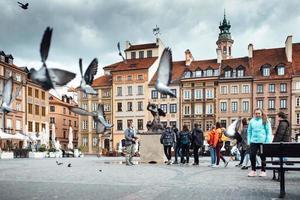 varsavia, polonia 2017- piccioni volanti sulla vecchia piazza di varsavia, sobborgo di cracovia foto