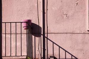 vaso di fiori rosa su una parete rosa foto