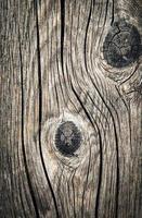 legno vecchio annodato foto