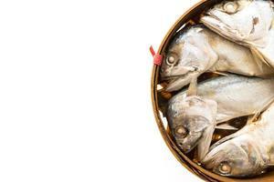 pesce sgombro isolato su sfondo bianco foto