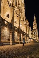 il parlamento ungherese di budapest sul danubio nelle luci notturne dei lampioni
