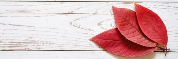 diverse foglie cadute autunno rosso su uno sfondo di tavola di legno chiaro foto