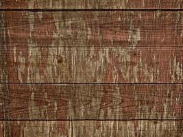primo piano della corteccia di albero per lo sfondo o la trama foto