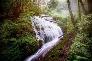 cascata nel parco nazionale di inthanon, chiangmai, thailandia foto