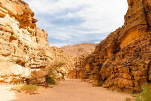 valle in un canyon roccioso foto