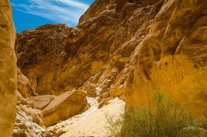 rocce marroni in un canyon foto