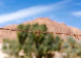 filo spinato arrugginito foto