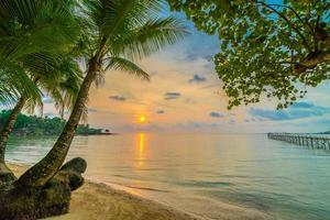 bellissima isola paradisiaca con spiaggia e mare intorno alla palma da cocco foto