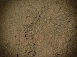 patch di terreno roccioso o sabbia per lo sfondo o la trama foto