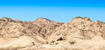 colline marroni nel deserto foto