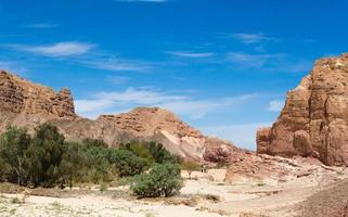 oasi nel deserto nel mezzo di alte montagne rocciose foto