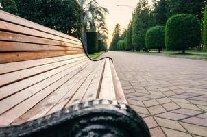 panca in legno in un parco foto
