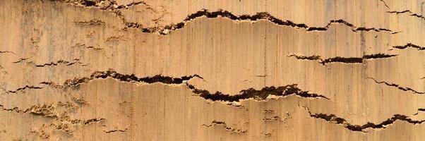 trama di sfondo dalla superficie liscia del suolo terrestre foto