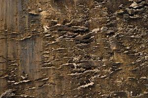 trama di sfondo dalla superficie sciolta del suolo di sabbia e terra foto