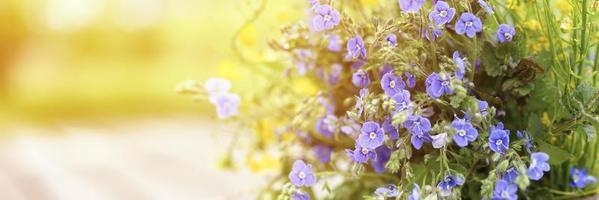 un bouquet di fiori di campo di nontiscordardime, margherite e denti di leone gialli in piena fioritura in un vaso rustico foto