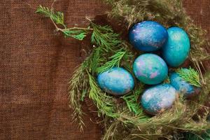 uova di Pasqua nel nido foto