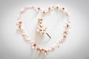 fiori di primavera margherita che formano un cuore con uovo di Pasqua e fiore margherita foto