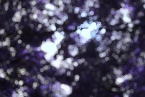 bokeh di colore viola dell'albero foto