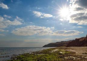 vista sul mare con sole e alghe foto