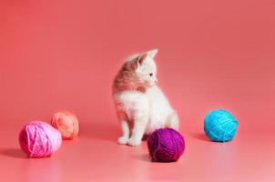 gattino tabby arancione con filato foto