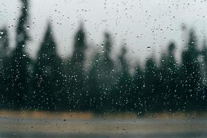 gocce di pioggia sul vetro con alberi sullo sfondo