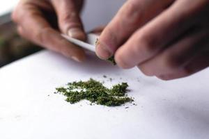 torcendo lo stipite con marijuana medica, primo piano di trattamento di cannabis foto