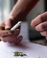 torcendo lo stipite, primo piano dell'erba di cannabis foto