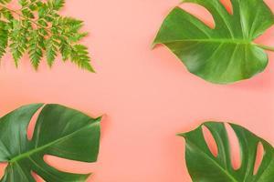 monstera e foglie di felce giacevano su sfondo rosa foto