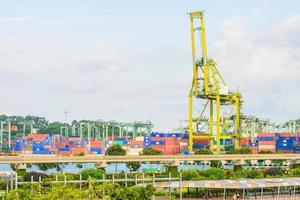 gru nel porto di singapore foto