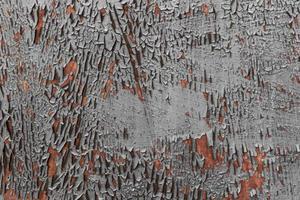 muro esterno arrugginito e incrinato foto