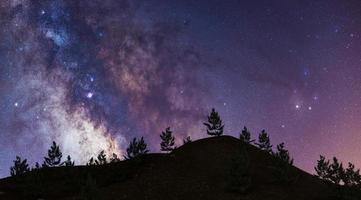 Via Lattea sulla montagna con alberi di pino, rendering 3d, concetto di astronomia