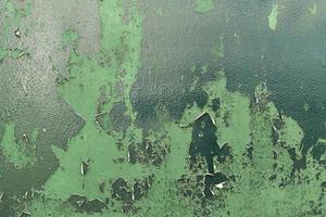 muro verde graffiato arrugginito foto