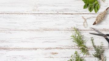 copia spazio piante attrezzi da giardinaggio da vicino foto