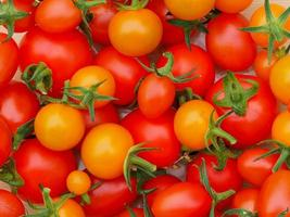 pomodori rossi e arancioni foto