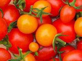 primo piano di pomodori arancioni e rossi foto