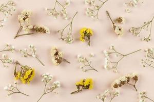 vista dall'alto fiori piatti laici foto