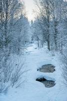 ruscello nel nord della Svezia foto