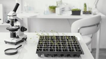 disposizione con piantine di piante e microscopio foto