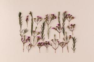 fiori piatti laici sul tavolo foto