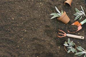 strumenti disposti sul terreno da giardinaggio foto
