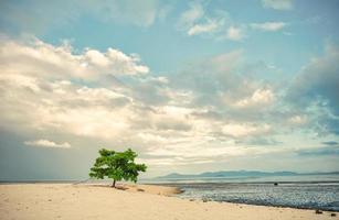 alba della spiaggia di Lakawon a Cadice, Negros Occidental foto