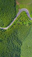 vista aerea della strada rurale in zona di campagna, vista da drone foto