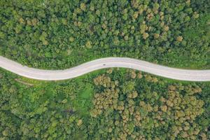 vista aerea superiore della strada nella foresta, vista da drone foto