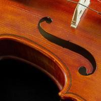 primo piano del violino con belle curve foto