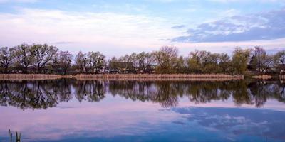bellissimo paesaggio lacustre mattina, stagno suburbano foto