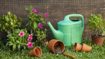 vaso per piante con annaffiatoio foto