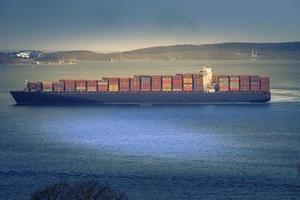 vista sul mare con una grande nave portacontainer. foto