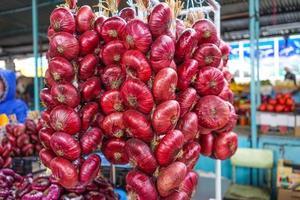 cipolle rosse in lunghi fasci sul bancone in vendita. foto