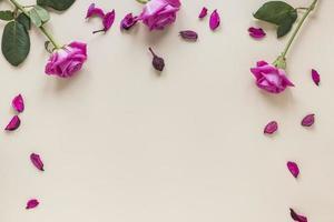fiori di rosa rosa con tavolo di petali foto