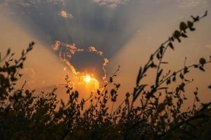 lo sfondo del cielo al tramonto foto